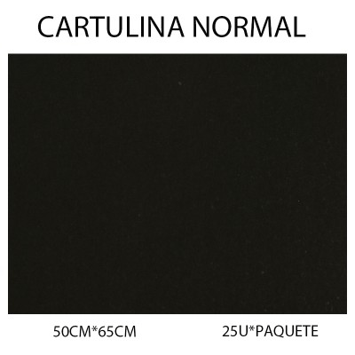 CARTULINA NORMAL 50CM*65CM...